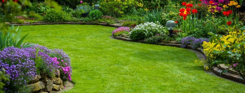Preparando el jardín - Matura