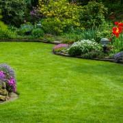 10 Tips para diseñar tu jardín