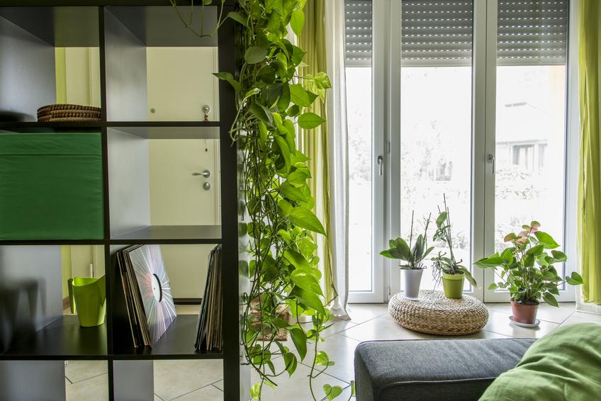 Cómo ganar espacio en un Salón - Villalba