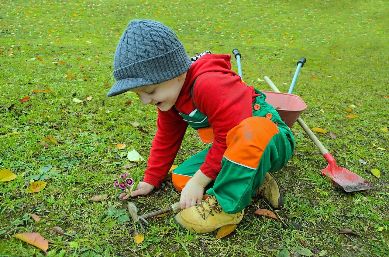 Haz tu jardín paso a paso - incluso los más pequeños de la casa